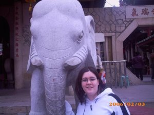 Me at Nanputuo in 2006.  The entrance and the elephants were both a lot more plain then.