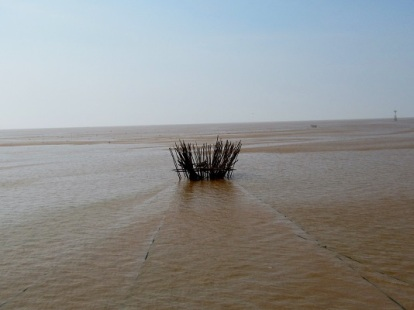 A fishing trap used by locals