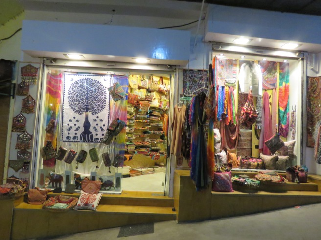 One of a hundred shops in Udaipur