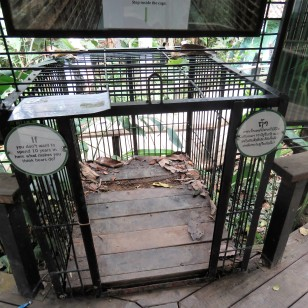 This is the size of the cages that are used to keep the bears at bile farms