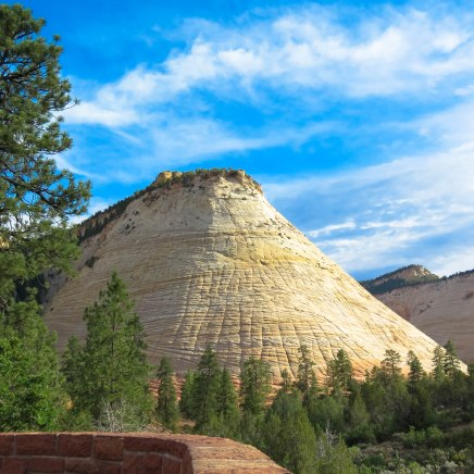 It's called the Checkerboard Mesa because of the grooves that were carved into the entire formation throughout the centuries.