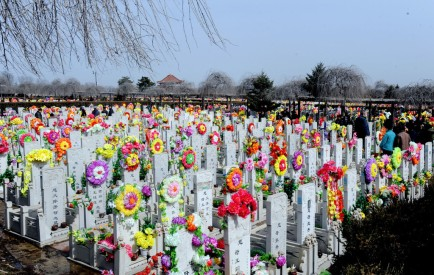 To celebrate the festival, Chinese people decorate and clean the tombs of deceased family members