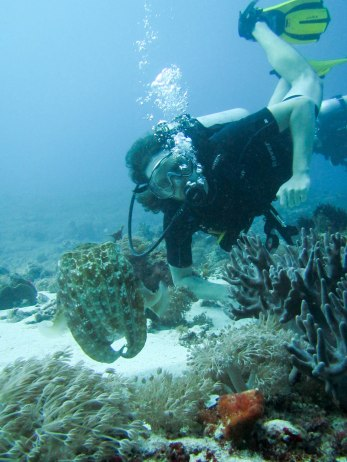 And of course, our trips aren't complete unless Dave has had a chance to do some diving!